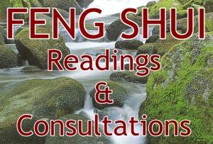FS consultations
